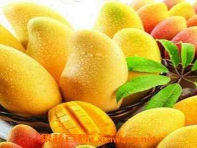 怀孕35天可以吃芒果吗 孕妇吃芒果的好处和坏处